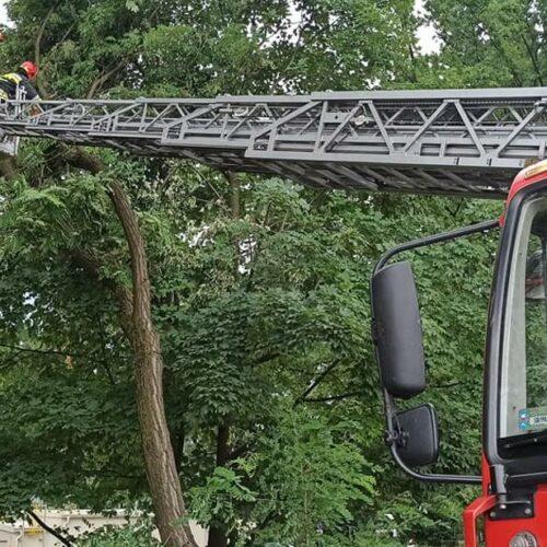 Blisko 170 interwencji strażaków w ciągu ostatnich 6 dni w związku z sytuacją pogodową na terenie Bielska-Białej i powiatu bielskiego